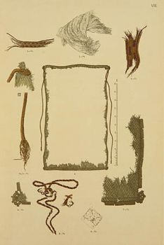 Picture from archaeological grave find catalog.